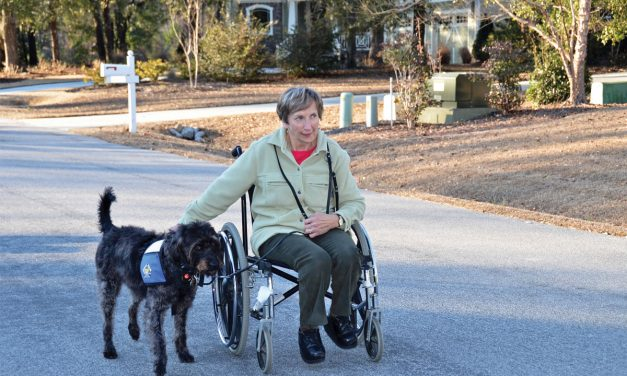 Lending a Helping Paw: How Canines for Service helps others