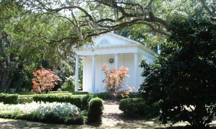 Enlightening Places: An Afternoon at Orton Plantation