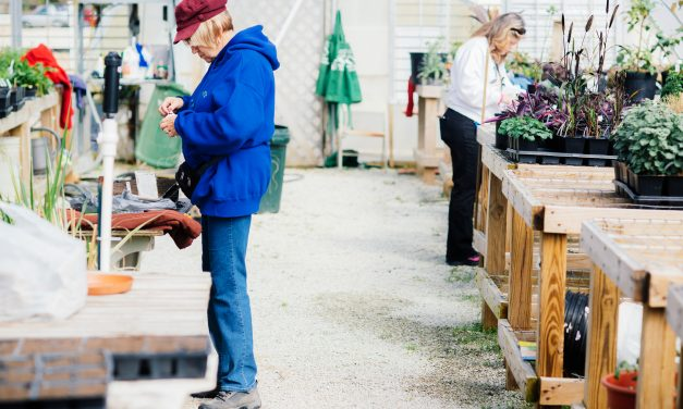 Backyard Ecology: The Brunswick County Botanical Garden