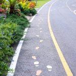 Walk Bike Leland: The Pedestrian Plan