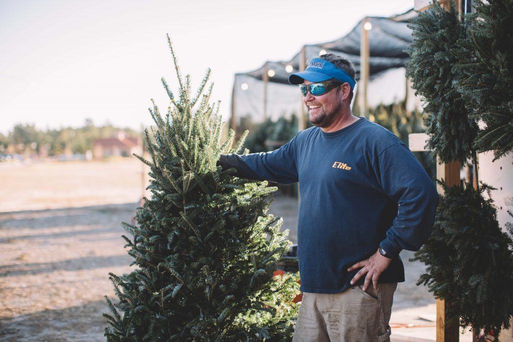 NC Christmas trees in Leland NC
