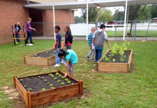 Lincoln Elementary School Garden Project