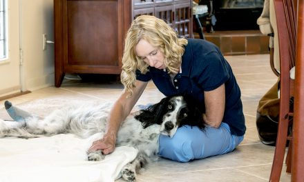 Janet Jonas Helps Dogs Through Touch