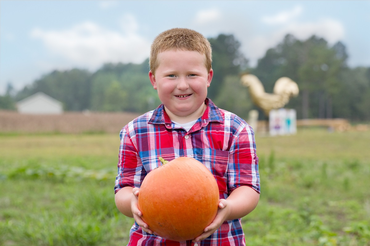 Pumpkin Patch Leland NC