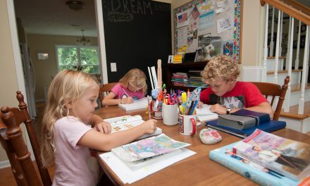 A Look at Homeschooling in Brunswick County