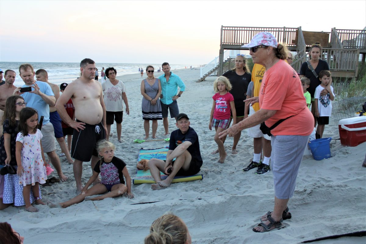 Ocean Isle Sea Turtle Protection