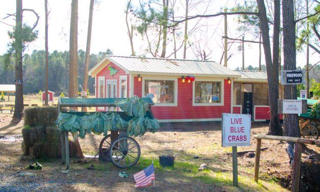 Business Profile: Livingston Creek Farmers Harvest, LLC