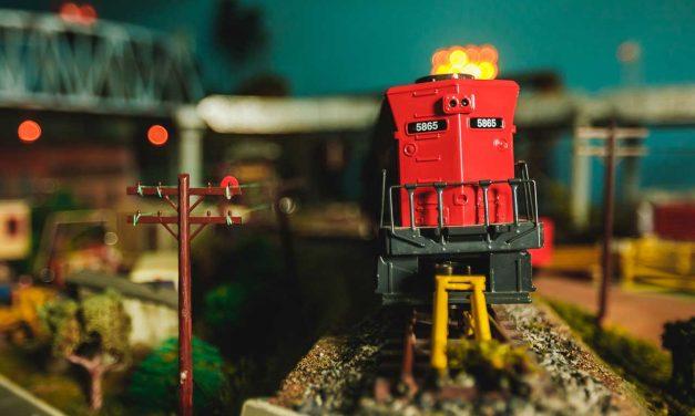Riding the Miniature Rails