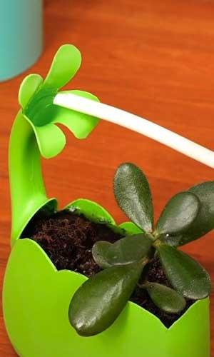 Detergent-Plant-Holder