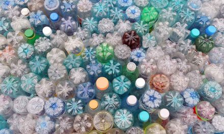 Plastic Free July – How You Can Creatively Reuse and Recycle This Month