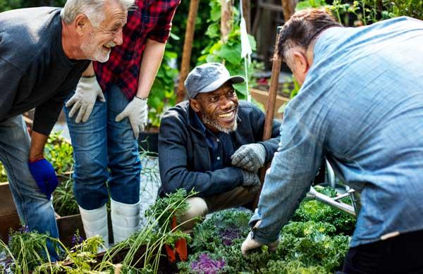 Giving Garden Brunswick NC