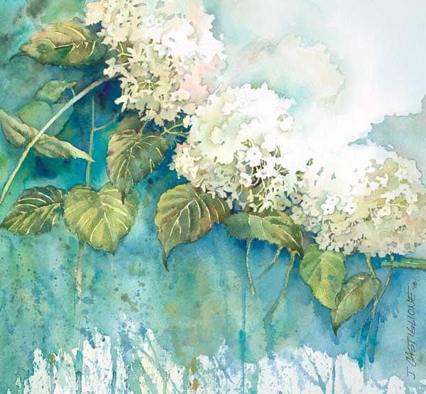 Janice Castiglione Natures Lace