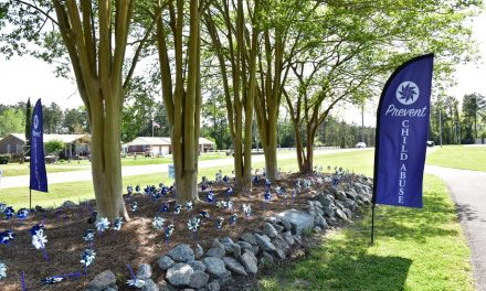 Pinwheels for Child Abuse Prevention